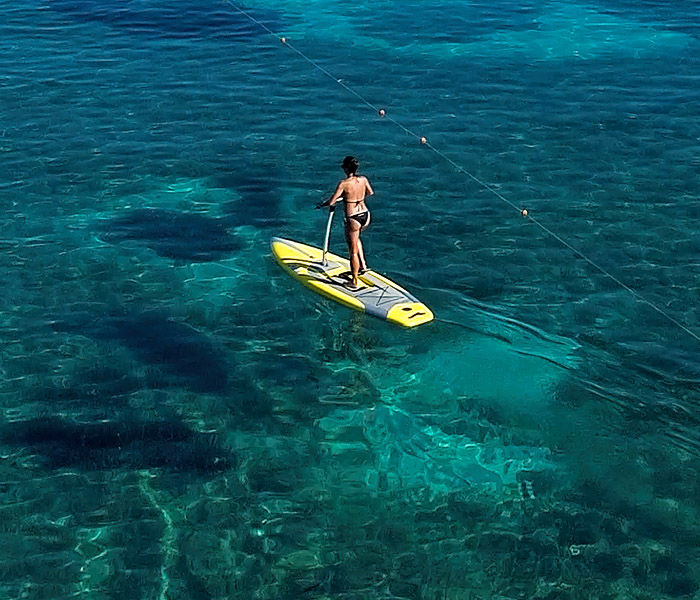 pedal_sup_2
